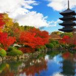 【第63回】東京、大阪、京都で個別相談会を承ります(5000円)。【9/12〜10/5】